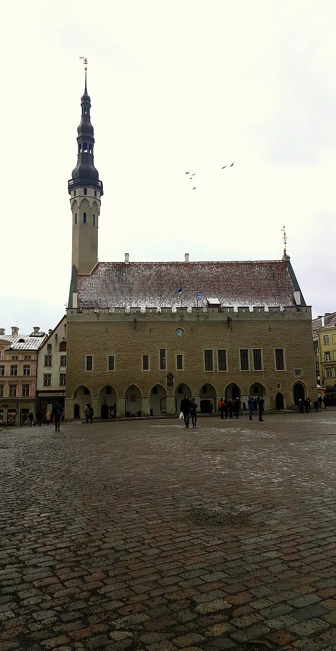 Ratusz w Tallinnie